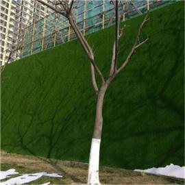 人造草坪幼儿园地毯 仿真草坪塑料假草皮 足球场人工草坪