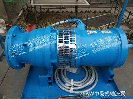 推荐中蓝现货中吸式QZB轴流泵