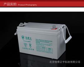 金武士UPS铅酸蓄电池PW100-12-YA 12V100AH
