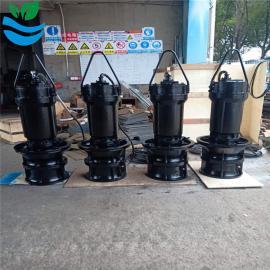 兰江潜水轴流泵