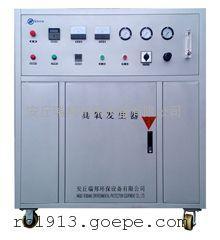 生活饮用水处理臭氧设备 瑞邦臭氧发生器 质量有保证