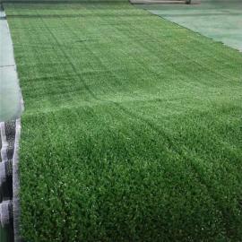 市政美化需要仿真草坪围挡 游乐场无毒无味人工草坪