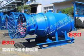 雪橇斜拉式QSZ中吸式轴流泵供货商推荐