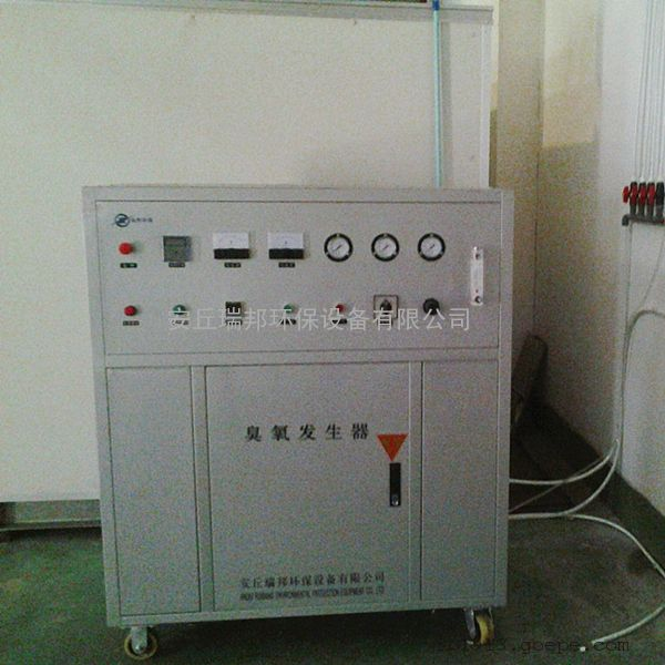 安丘瑞邦中型水冷臭氧发生器杀菌消毒用臭氧设备