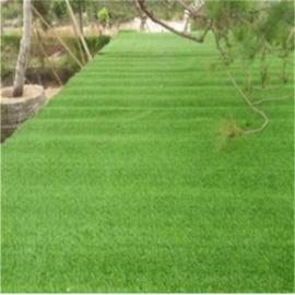 江瀚1.0cm 2.0cm 人工草坪 绿化草坪 景观草坪 围挡草坪