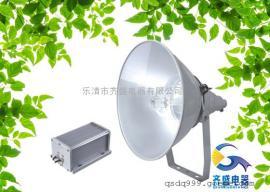 FZY9190C防震投光灯·FZY9190C·FZY9190C电厂投光灯