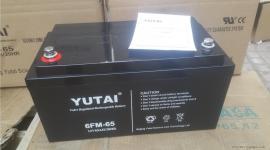 宇泰YUTAI直流屏铅酸蓄电池6-FM-65 12V65AH