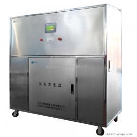 瑞邦中型水冷臭氧发生器环保臭氧设备定做PLC控制