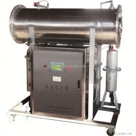 安丘瑞邦中型臭氧发生器制造商十余年生产经验PLC控制