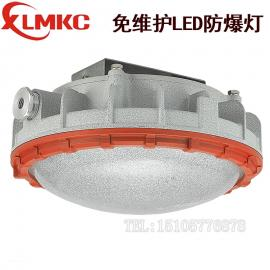 新黎明BZD180-111-15W,22W,40W防爆LED吸��� 免�S�oLED��
