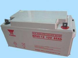 汤浅免维护NP100-12阀控式100AH型号