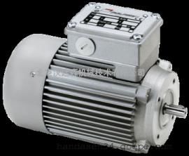 意大利Mini motor异步电机AM 40规格介绍