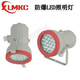 新黎明BZD180-110防爆免维护LED照明灯 防爆视孔灯 BSD96LED
