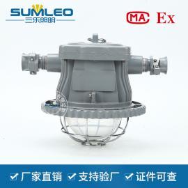 DGS30/127L(A)30瓦集成矿用巷道灯