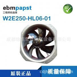 W2E250-HL06-01德��ebmpaspt�C柜�L�C七�~�S流�L扇
