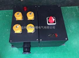 BXS8050-4路防爆防腐电源插座箱