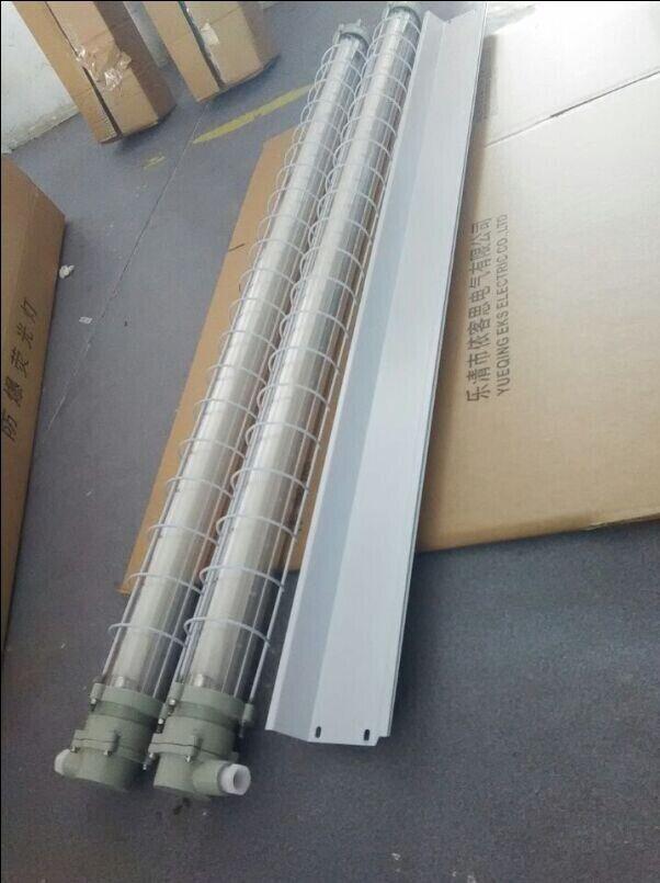 2*18W双管LED防爆荧光灯DC36V