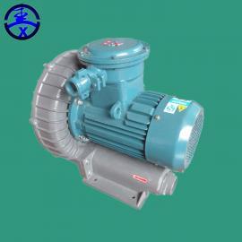环形防爆高压漩涡式气泵