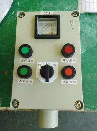 就地水泵立式防爆操作柱BZC51-A2D2B1