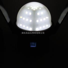 FW6330轻便式装卸灯|货场码头铁路装卸检修灯