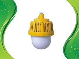 凯瑞 LED防爆灯/功率50W 白光6000KU型支架式/KLE1018