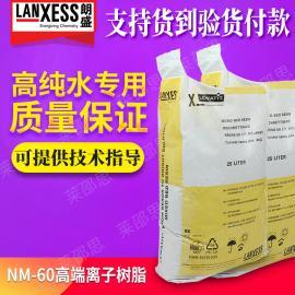 吸附金属离子 德国朗盛拜尔NM-60电子级 水处理设备专用混床树脂