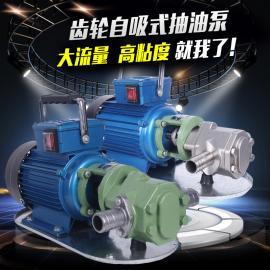 WCB便�y手提式�X�油泵 �蜗喾辣�自吸式�X�抽油泵