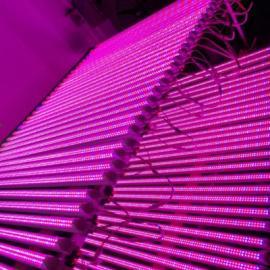 led植物生长灯 led组培灯 led大棚补光灯 植物灯厂