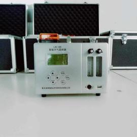 劳动卫生专用LB-6E 大气采样器(交直流两用)