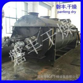 磐丰干燥推荐 城市污水用空心桨叶干燥设备 节能型污泥干燥机