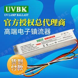 原装电子整流器 55W紫外线UV灯管专用电源变压器 保护电路