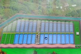 水产养殖设备-循环水养殖设备系统-养鱼养虾设备方案