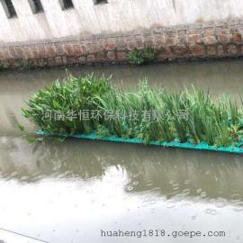 河道治理水生植物浮岛 生态浮床塑料 水生植物种植 生态工程