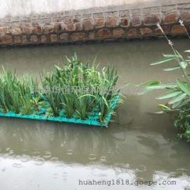 河道绿化 水质净化 植物浮床 人工生态浮岛 抗风浪浮床