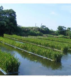 人工生态浮岛 生物浮岛 河道绿化 水生植物浮岛 水上种植浮床