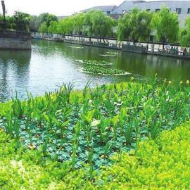 水上生态浮岛浮床 水面绿化浮岛 植物浮岛 生物浮岛