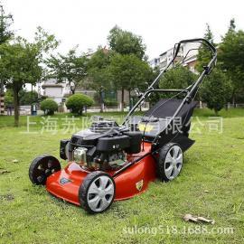30寸�扰膨T式割草�C12.5PH草坪�、高��夫割草�坐�T式割草�C