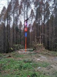 林区入口监控-防火警示系统