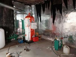小型燃气蒸汽锅炉 酿酒锅炉 立式蒸汽锅炉