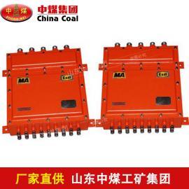 LBY127矿用隔爆硬盘录像机,优质隔爆硬盘录像机