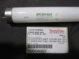 Thermo fisher 13918400 NBLZR CONCENTRIC GLASS 雾化器