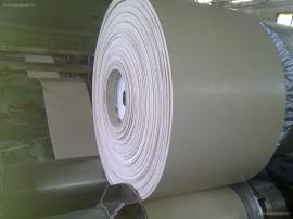 食品级白色橡胶输送带 中海海能生产各种型号 挡边带 提升带