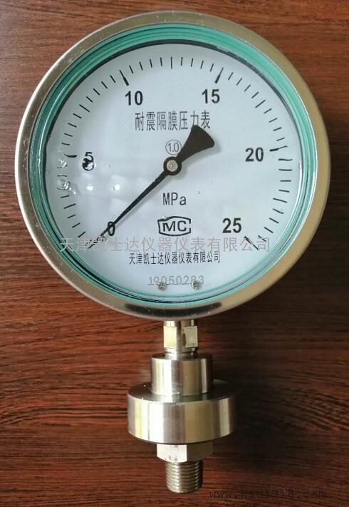耐震隔膜压力表YTP100ML隔膜耐震压力表