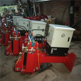 港口起重机提梁机防风制动装置 电动弹簧液压夹轨器 电动夹轨器