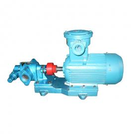 1立方润滑油泵 小型号油泵 铸铁材质齿轮泵 压力1.45