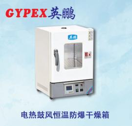防爆干燥箱BYP-070GX-12.5HL,涂料厂防爆烤箱300度