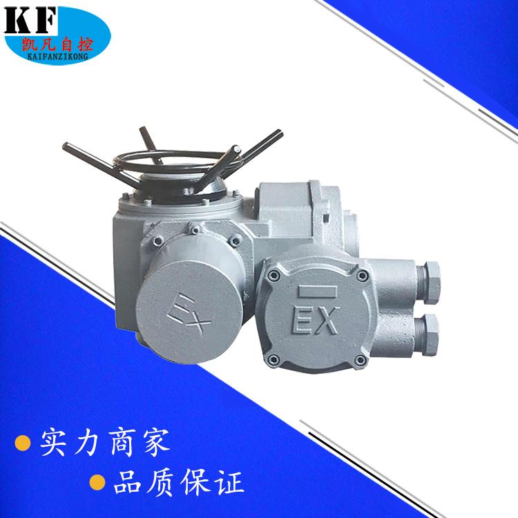 普通防爆型电动执行器 BT4电站用隔爆阀门电装 DZW10-24B电动头
