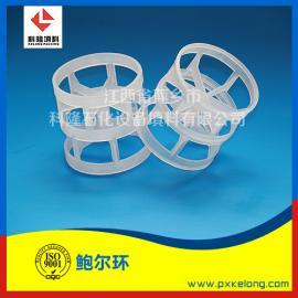 全新优质塑料PP鲍尔环填料 DN38聚丙烯鲍尔环现货
