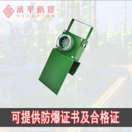 DGY0.36/3.6L(A)�V用隔爆型LED�C���