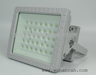 吸顶式100WLED防爆投光灯 壁挂式100WLED防爆灯 壁挂式LED防爆灯